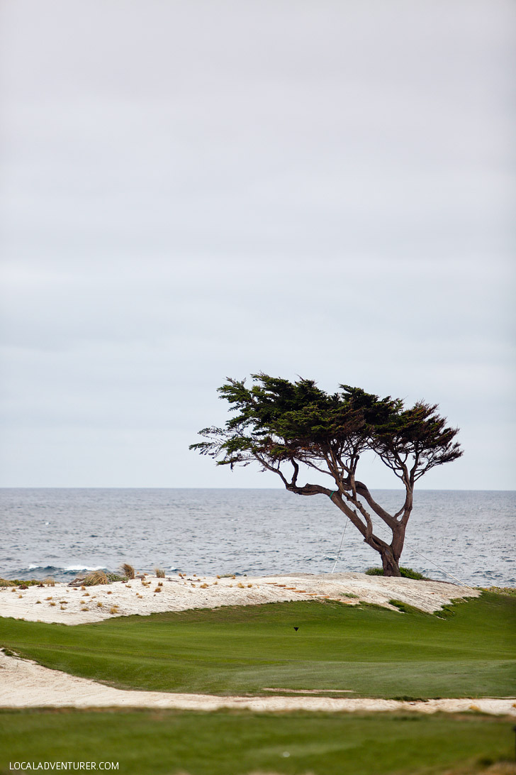 Point Joe 17 Mile Drive Monterey California // localadventurer.com