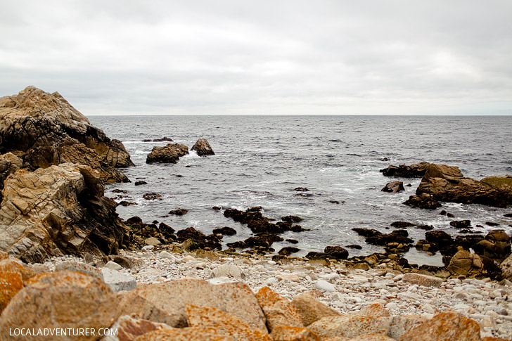 The Restless Sea, World Famous 17 Mile Drive, Pebble Beach California // localadventurer.com