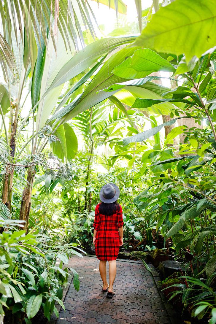 Atlanta Botanical Garden // localadventurer.com