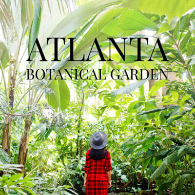 Atlanta Botanical Garden is a 30 acre garden in Midtown Atlanta that host several art exhibits throughout the year // localadventurer.com