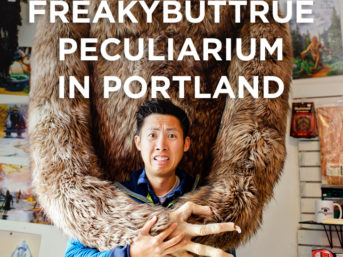 I'm sure you've heard Portland is weird. If you're looking for the weirdest thing to do, visit the Freakybuttrue Peculiarium in Northwest Portland // localadventurer.com