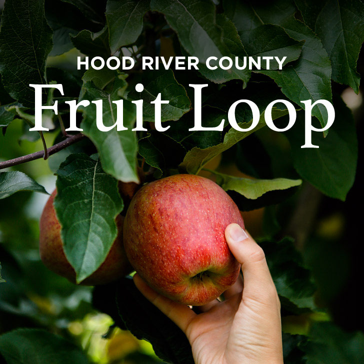 Apple Picking in the Oregon Fruit Loop // localadventurer.com