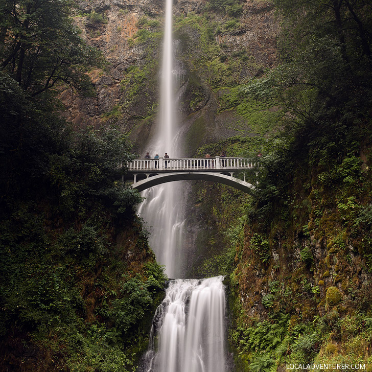 Multnomah Falls (+ 25 Free Things to Do Near Portland Oregon) // localadventurer.com