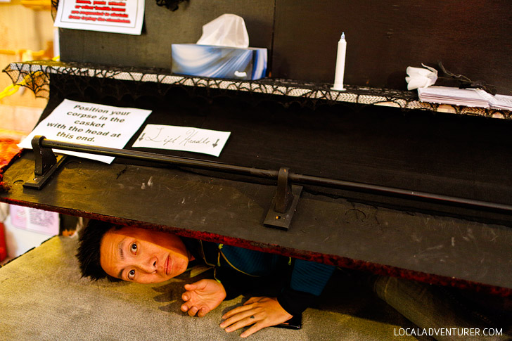 The Freakybuttrue Peculiarium Portland Oregon // localadventurer.com