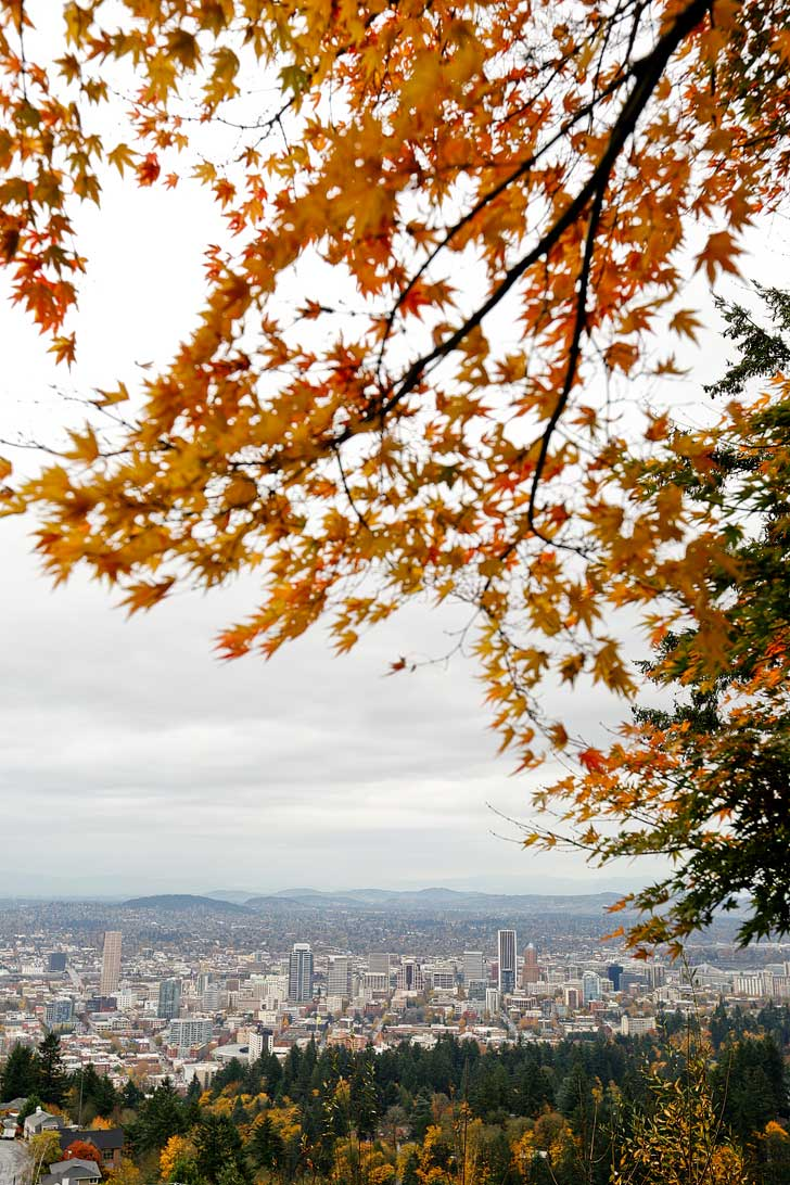 Pittock Mansion View of Portland. You can even see Mt Hood on a clear day // localadventurer.com