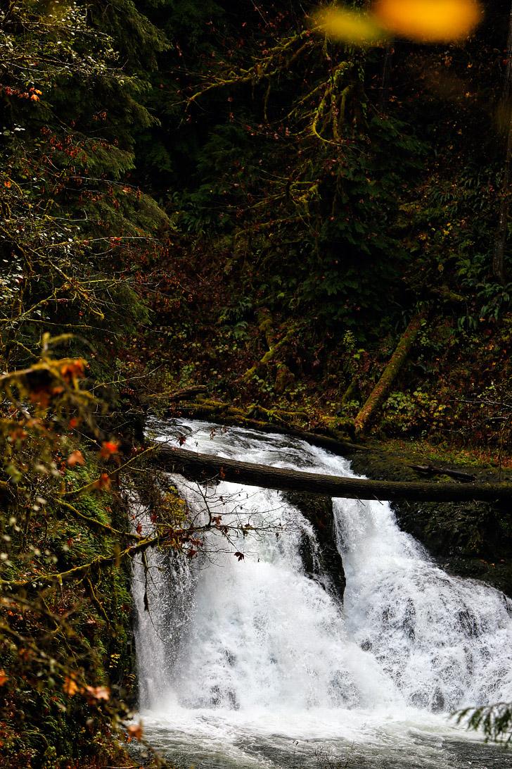 Twin Falls - Oregon Waterfall hikes // localadventurer.com
