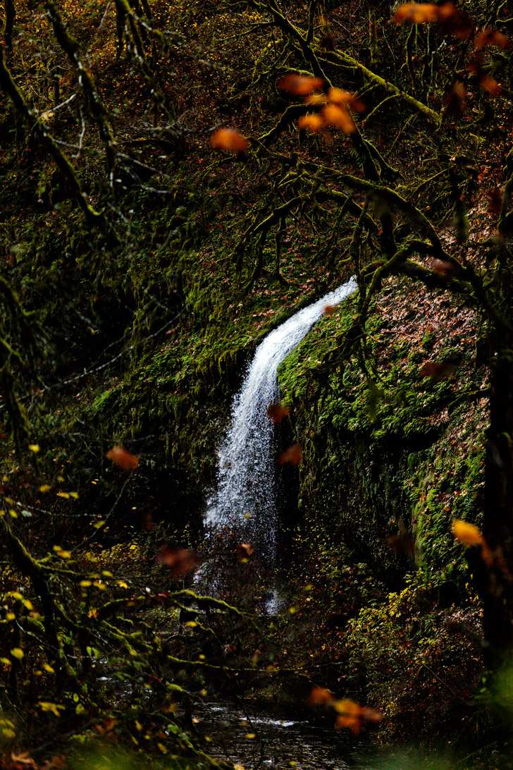 Trail of Ten Falls Hike in Oregon // localadventurer.com