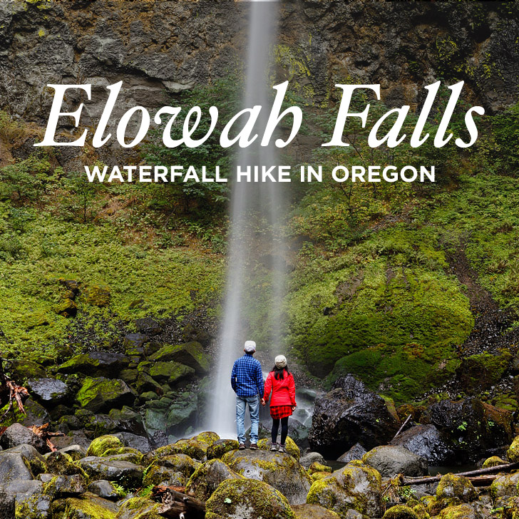 The Beautiful Elowah Falls Hike – Chasing Waterfalls in Oregon
