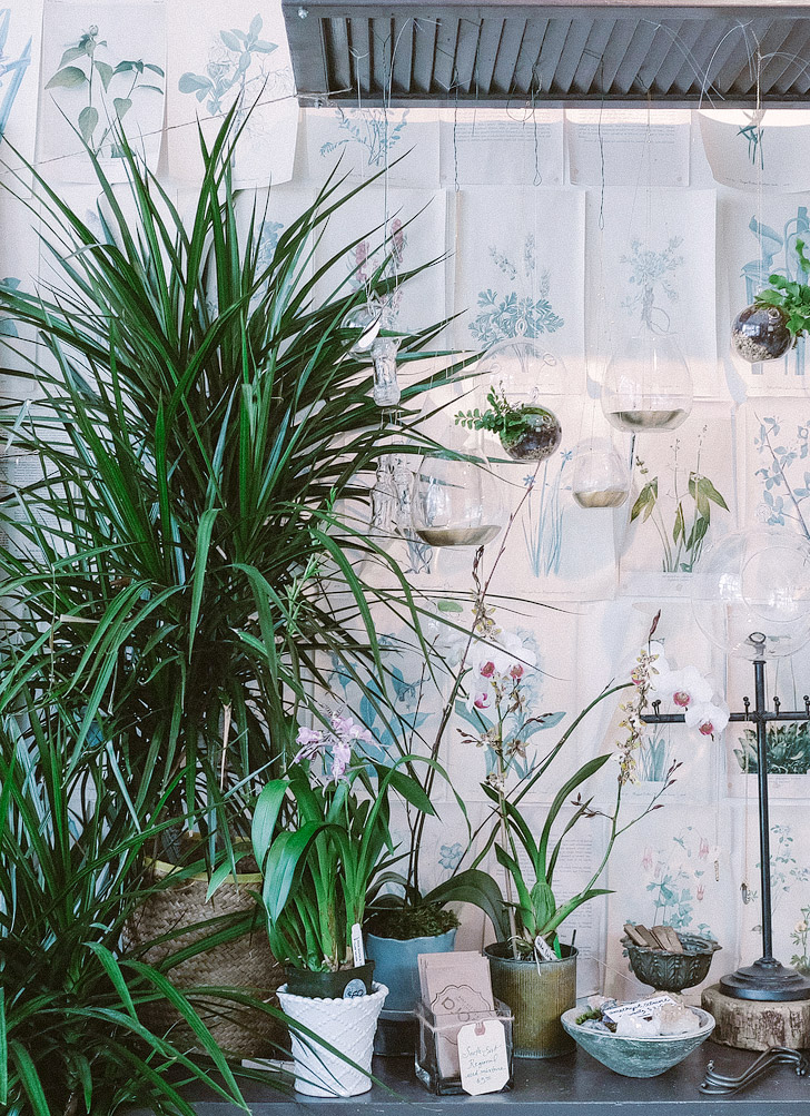 Visit a Flora Open House (Asheville Bucket List - 101 Things to Do in Asheville NC) // localadventurer.com