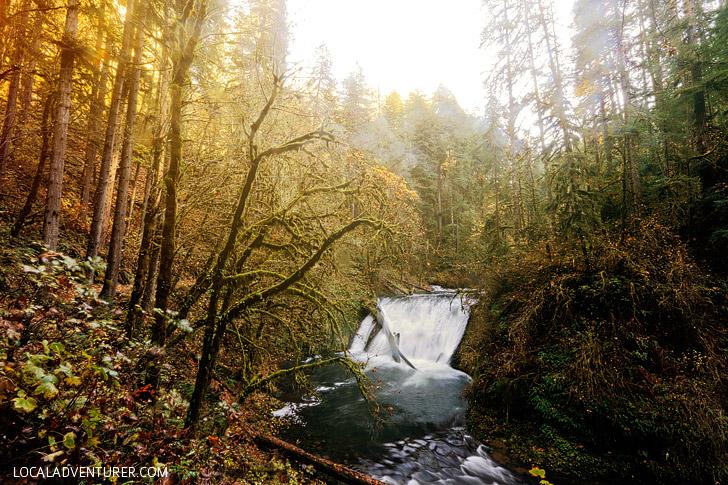 Trail of Ten Falls Hiking Guide – Silver Falls State Park Oregon