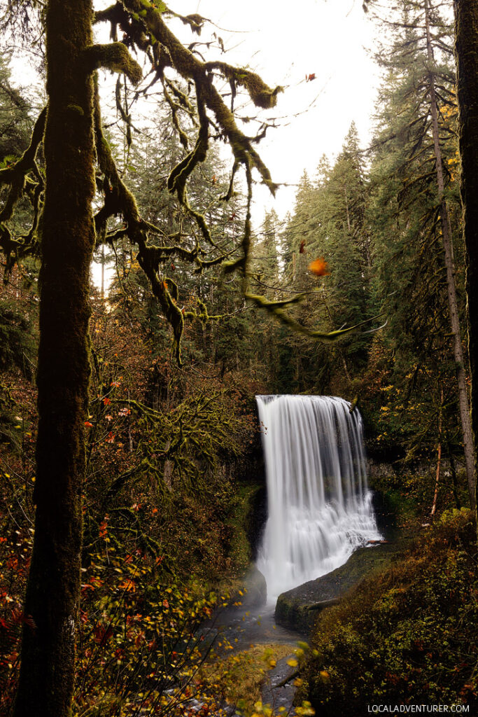 Middle North Falls, Trail of Ten Falls Hike, Silver Falls State Park, Oregon USA // localadventurer.com