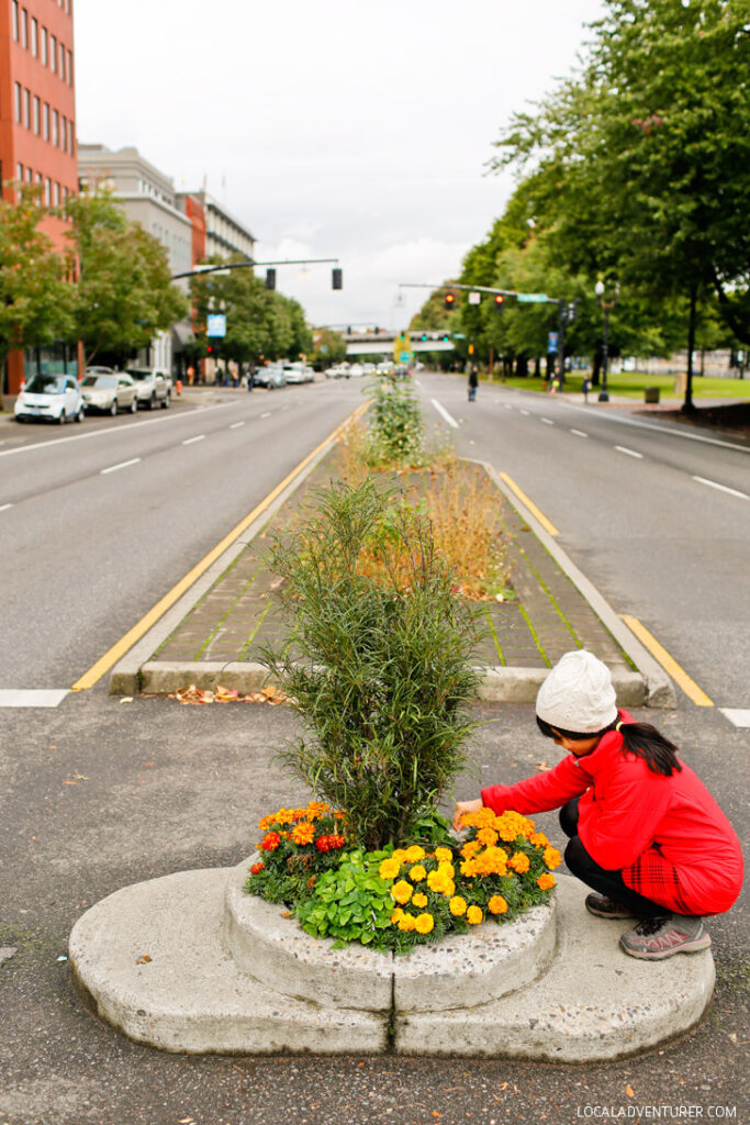 Mill Ends Park in Portland Oregon is the World's Smallest Park // localadventurer.com