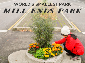 Mill Ends Park - World's Smallest Park // localadventurer.com
