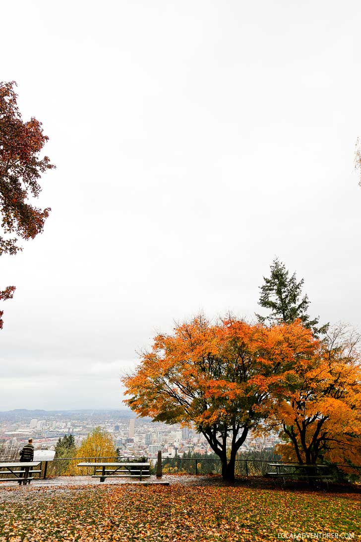 Pittock Mansion has one of the best views of Portland // localadventurer.com