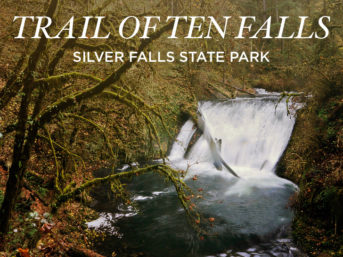 Photo Guide: Trail of Ten Falls Silver Falls State Park Oregon // localadventurer.com