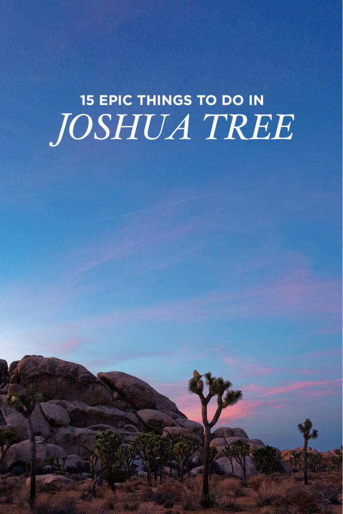 Your Essential Guide to Joshua Tree California