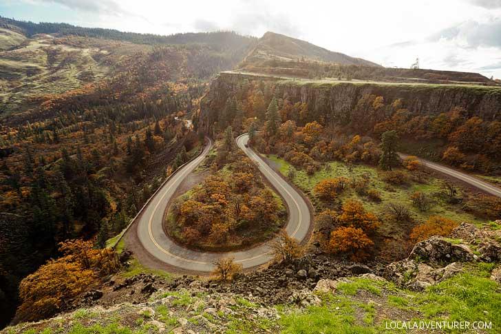 Rowena Crest Tom Mccall Nature Preserve in Oregon // localadventurer.com