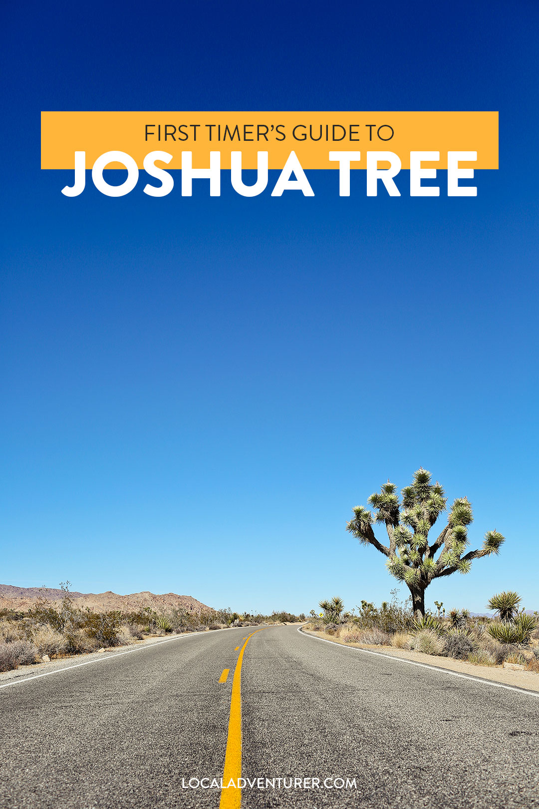 11 Amazing Things to Do in Joshua Tree National Park - First Timer's Guide and Tips