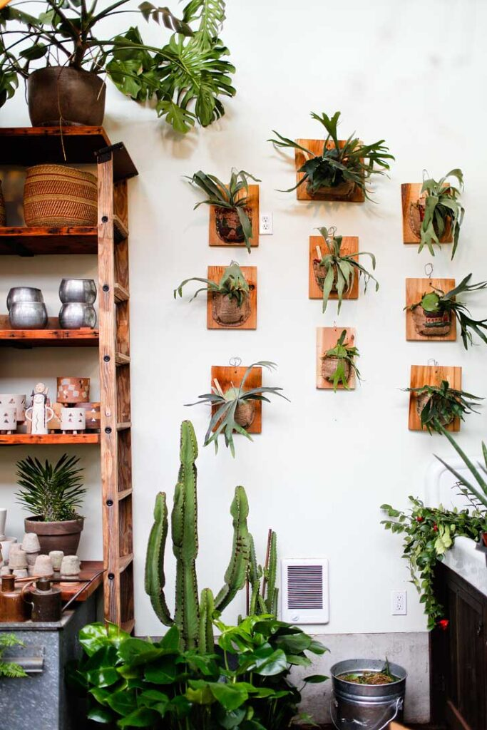 Pistils Nursery + 25 Most Instagrammable Places in Portland Oregon