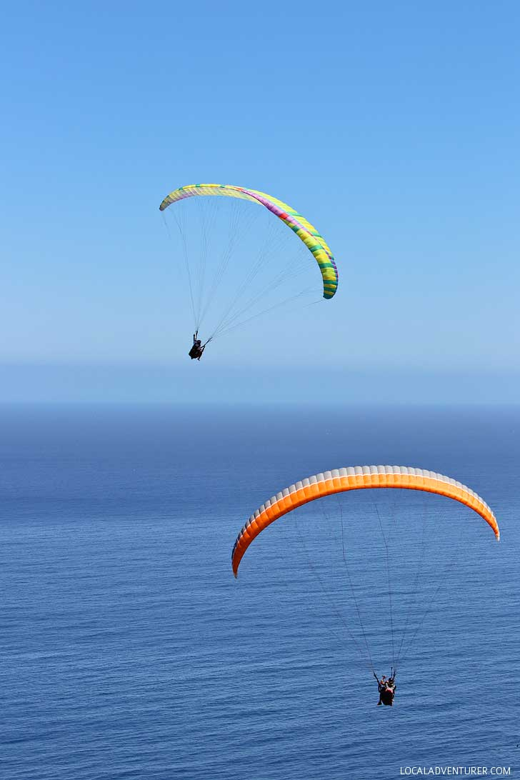 What You Need to Know About Cape Town Tandem Paragliding ...