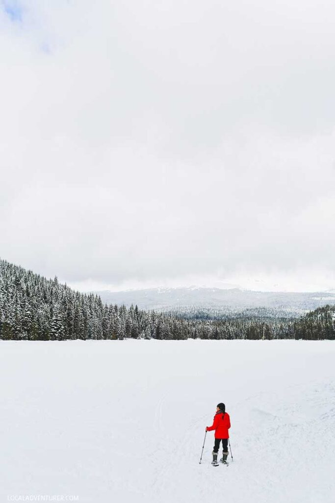 Trillium Lake Snowshoeing - This is one the best beginner spots for snowshoeing near portland. It's only an hour away and in the Mt Hood Territory. Check out our guide. // localadventurer.com