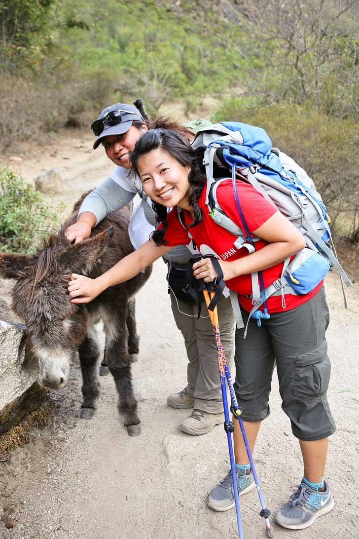 Hiking the Inca Trail Blog // localadventurer.com