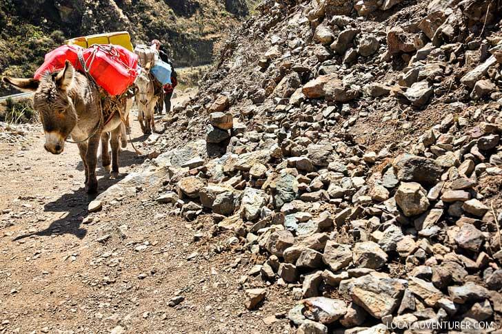 How to Hike the Inca Trail Peru // localadventurer.com