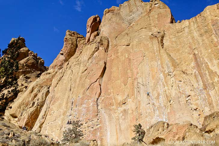 Morning Glory Wall Smith Rock Rock Climbing - Smith is one of the most popular climbing destinations in Oregon and the US. It has around 2000 climbing routes, but also plenty of activities even if you don't climb // localadventurer.com