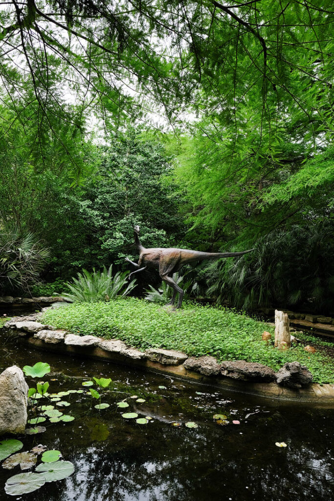 Zilker Botanical Garden + 101 Things to Do in Austin Texas - The Ultimate Austin Bucket List // localadventurer.com