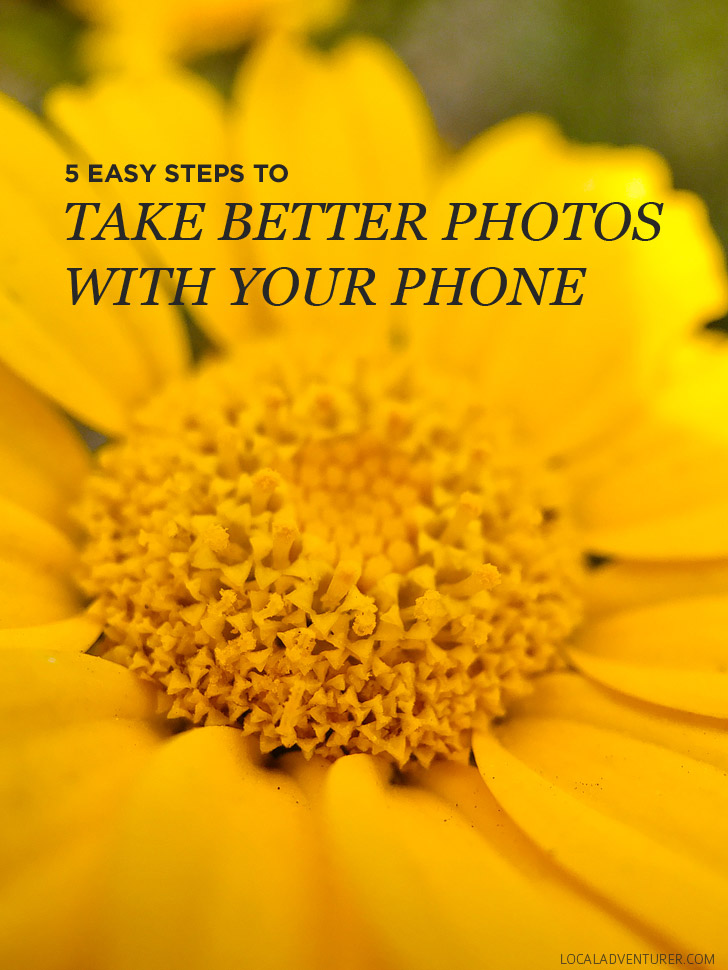 5 Quick and Easy iPhone Photography Tips // localadventurer.com