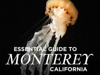 Essential Guide to Monterey California // localadventurer.com