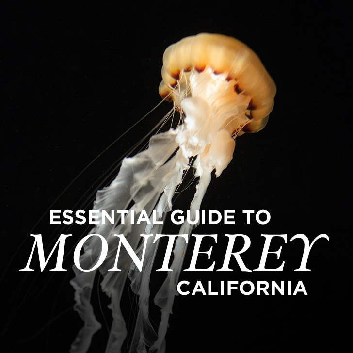 15 Things to Do in Monterey CA + Giveaway