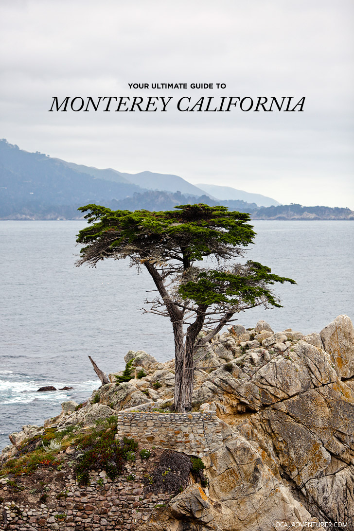 Heading to the Monterey Peninsula. You don't want to miss these 15 things to do in Monterey CA. It's also a great home base for exploring Big Sur // localadventurer.com