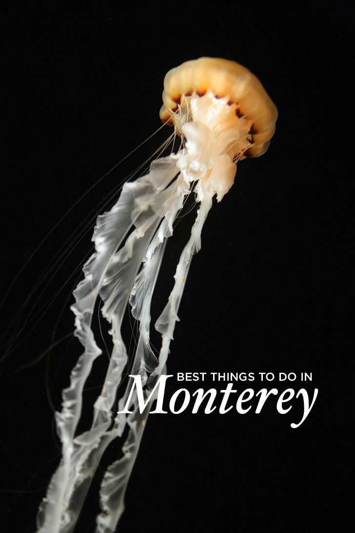 Heading to the Monterey Peninsula. Here's what to do in Monterey CA. It's also a great home base for exploring Big Sur // localadventurer.com