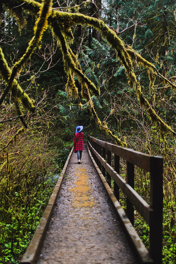 Photo Guide to Drift Creek Falls Trail, Lincoln City, Oregon Coast // localadventurer.com