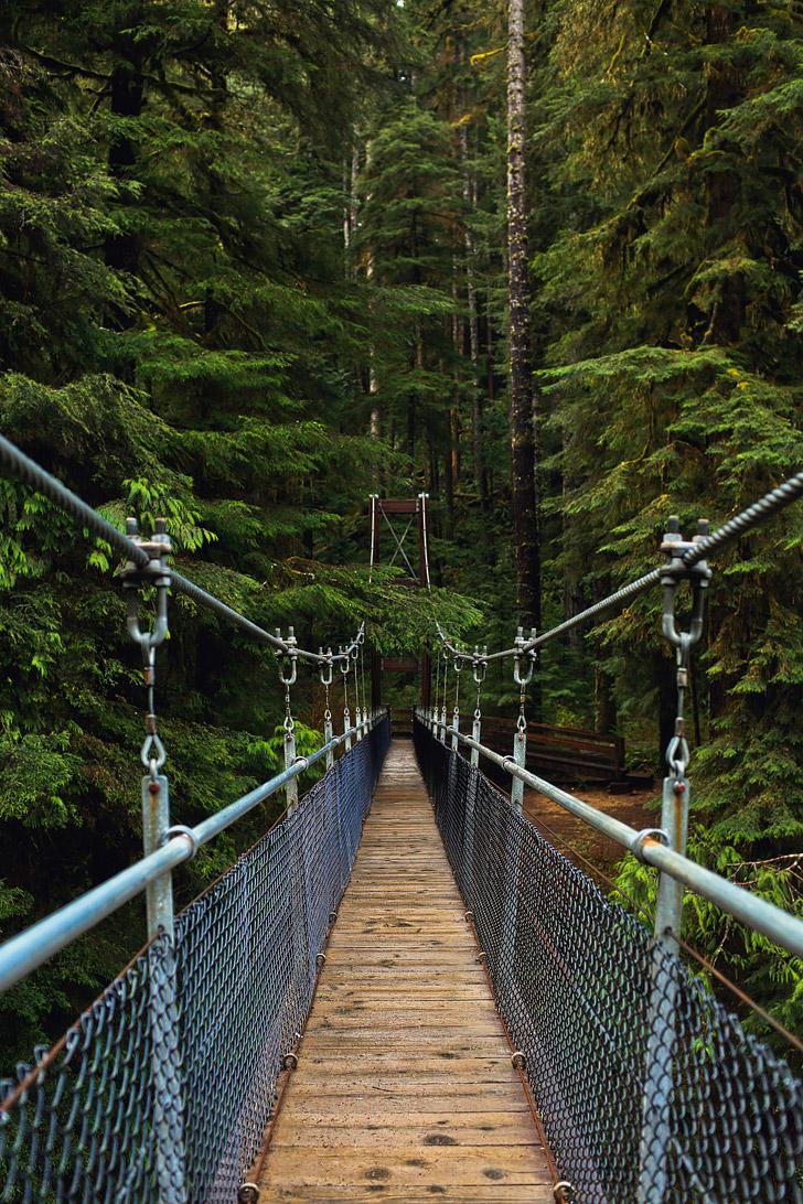 Drift Creek Falls Hike, Lincoln City, Oregon Coast // localadventurer.com