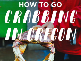 How to Go Crabbing in Oregon - All the essential tips and where to go // localadventurer.com