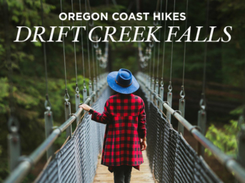 Amazing Hike on the Oregon Coast - Photo Guide to Drift Creek Falls Hike, Lincoln City // localadventurer.com