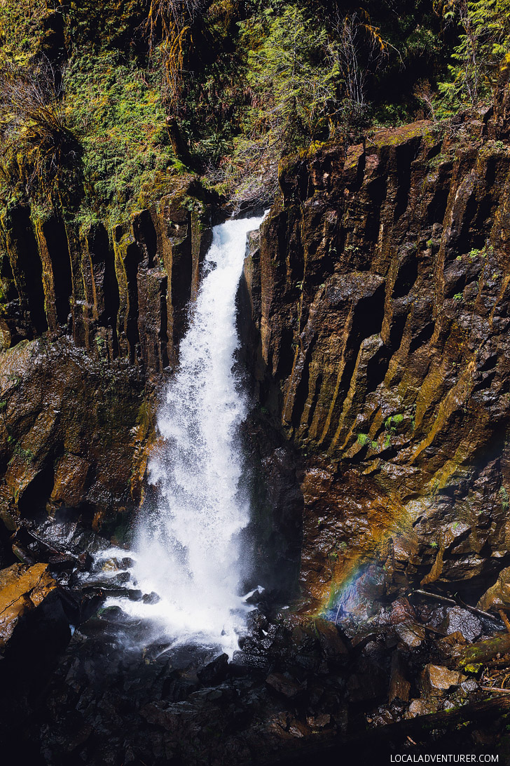 Photo Guide to Drift Creek Falls - Oregon Hikes, Lincoln City, Oregon Coast // localadventurer.com