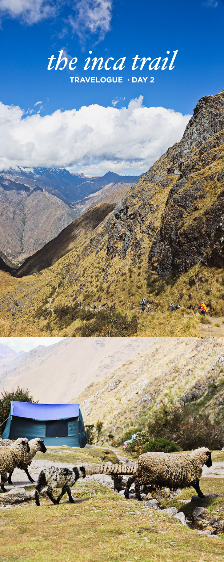 Brutal Climb to Dead Woman's Pass + How to Hike the Inca Trail Day 2 // localadventurer.com
