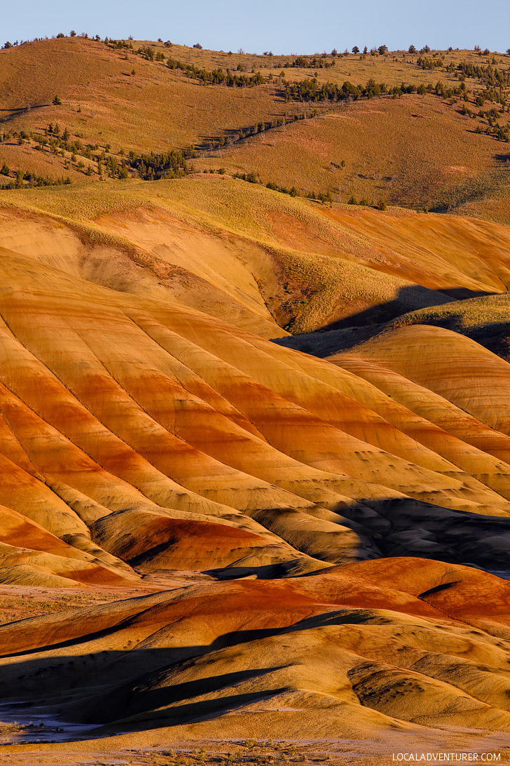 Painted Hills, Oregon + 9 Reasons Why Oregon is the Iceland of America // localadventurer.com