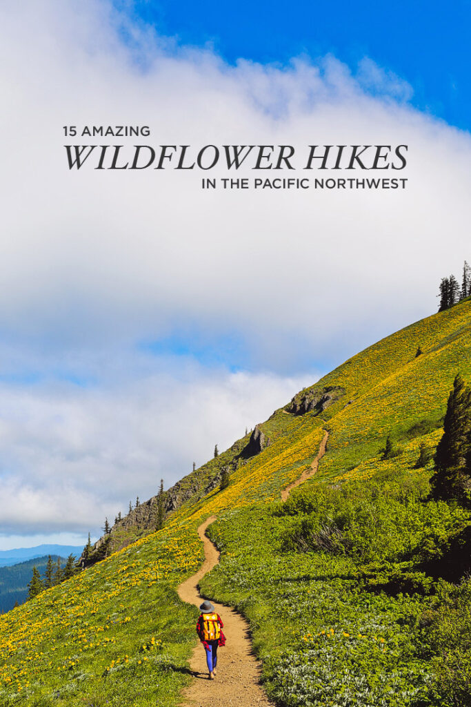 15 Amazing Wildflower Hikes in the Pacific Northwest // localadventurer.com
