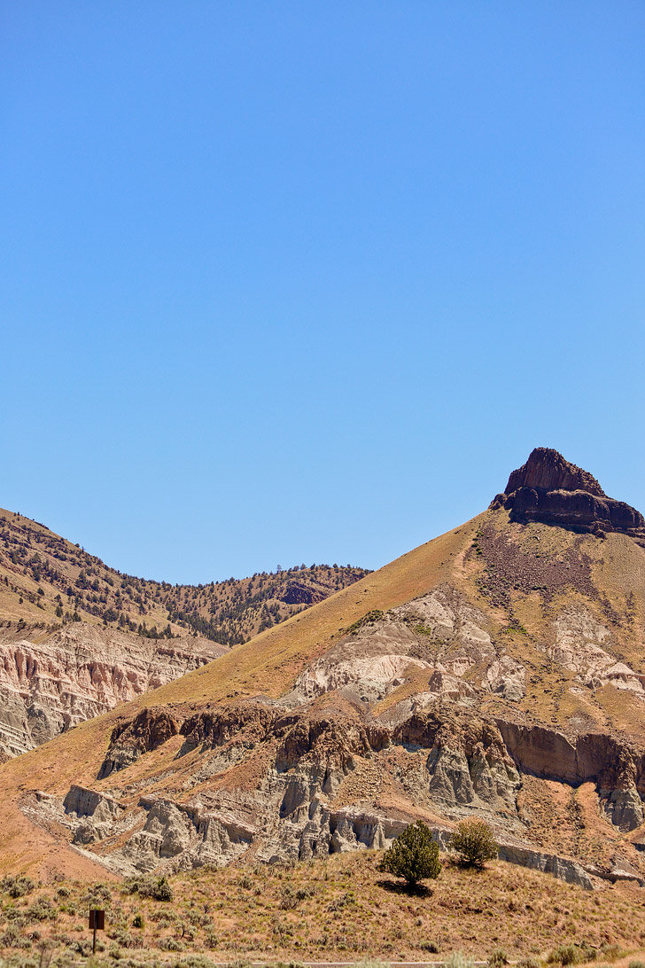 Your Guide to John Day Fossil Beds Sheep Rock Unit, Eastern Oregon // localadventurer.com