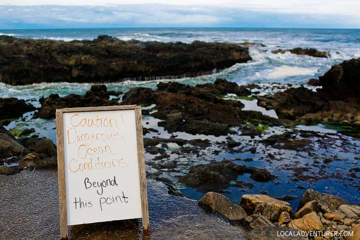 Cape Perpetua Scenic Area on the Oregon Coast + How to Get There and When to Visit // localadventurer.com
