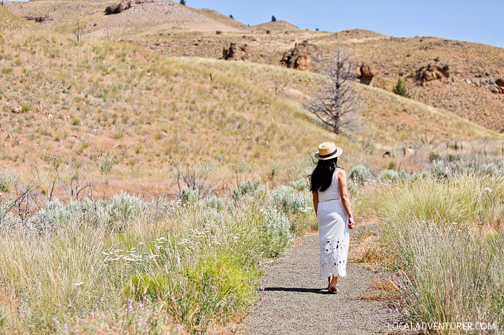 Clarno Unit + Your Essential Guide to the John Day Fossil Beds National Monument // localadventurer.com
