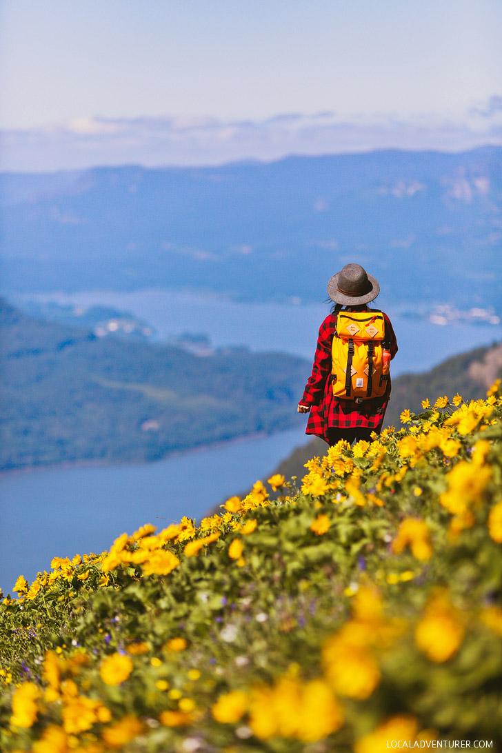 Dog Mountain Hike Washington Best Wildflowers Near