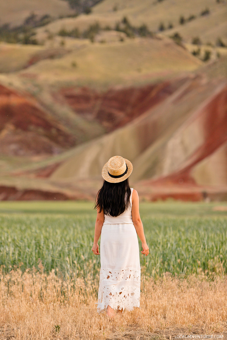 The Painted Hills John Day Fossil Beds National Monument