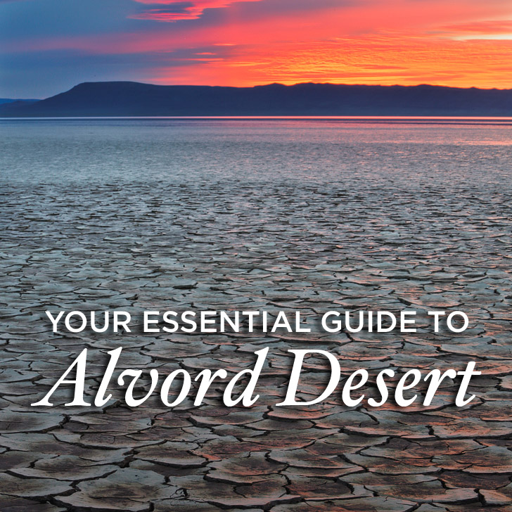 Your Essential Guide to Alvord Desert Oregon