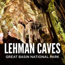 Fascinating Lehman Caves Tours at Great Basin National Park