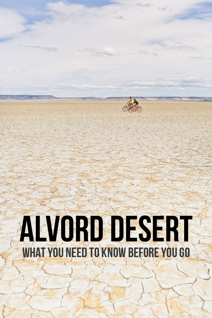Alvord Desert Oregon - What You Need to Know Before You Go // localadventurer.com